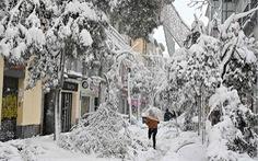 Mùa đông khắc nghiệt nhất 20 năm ở Tây Ban Nha