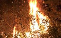 Cháy lớn cạnh trường bắn Sóc Sơn Hà Nội, nửa đêm vẫn chưa dập được lửa