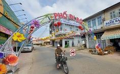 Tân Châu của An Giang mở phố đi bộ gần 250m cho bà con vui tết