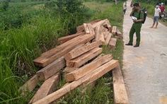 Tạm đình chỉ công tác nhân viên bảo vệ rừng tàng trữ trái phép hơn 5,45m3 gỗ