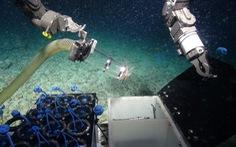 Siêu vi khuẩn dưới biển sâu – 'Chìa khóa' đối phó với các đại dịch tương lai