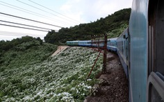 Đặt mục tiêu đầu tư 2 đoạn đường sắt tốc độ cao Hà Nội - Vinh, Nha Trang -TP.HCM