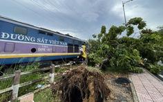 Cây xanh bật gốc vào đường ray khi tàu đưa người dân về quê chạy gần tới