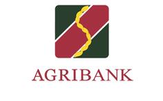 Agribank Chi nhánh Chợ Lớn thông báo tuyển dụng lao động năm 2021