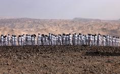 Hàng trăm người khỏa thân ở núi đá khô cằn để bảo vệ môi trường