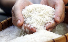 EU thu hồi hoặc cảnh báo nhiều sản phẩm nông sản và thủy sản Việt Nam