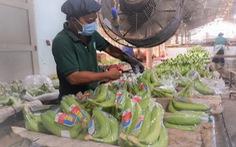 Các 'vua' nông sản nhắn gửi bộ trưởng Bộ NN&PTNT