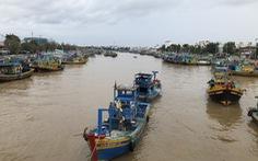 Từ 5-10, doanh nghiệp đảm bảo '3 tại chỗ' mới được hoạt động trong cảng cá Phan Thiết