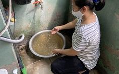 Nước sạch vàng khè, có cả giun nhưng công ty khẳng định 'đạt tiêu chuẩn'