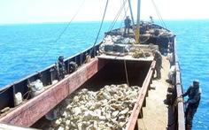 Nghị sĩ Philippines đòi Trung Quốc trả 'nợ' 16 tỉ USD vì phá hoại tài nguyên biển