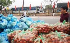 Nhiều nông sản Hải Phòng mong được 'giải cứu'