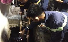 Đề nghị cấp bằng 'Tổ quốc ghi công' cho người hi sinh cứu người dưới cống thoát nước