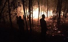 Rừng trồng ven biển bốc cháy ngùn ngụt, hơn 100 người chữa cháy
