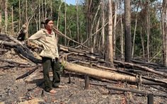 Mở rộng điều tra vụ án 'làm ngơ cho lâm tặc phá rừng' tại Đắk Lắk