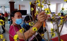 Niềm vui ngày xuân của người lao động nghèo
