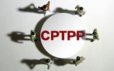 Trung Quốc nghiên cứu gia nhập CPTPP sau khi Anh nộp đơn