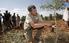 Cuộc chiến phủ lại rừng xanh - Kỳ cuối: Trồng rừng chỉ bằng... con dao bỏ túi