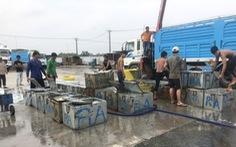 Campuchia cho phép nhập khẩu trở lại 4 loài cá từ Việt Nam