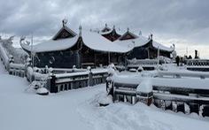 Vì sao đỉnh Fansipan có mưa tuyết dày đặc ngày giáp Tết?
