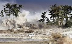 10 năm người Nhật vượt qua đại thảm họa sóng thần - Kỳ cuối: Những bài học từ siêu thảm họa