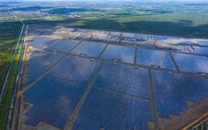Điện tái tạo: sắm trâu lơ sắm cày?