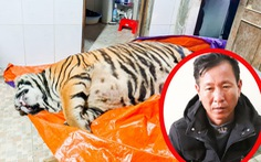 Khởi tố người đàn ông mua con hổ 2 tạ rưỡi về nấu cao