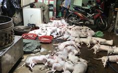 Bám theo 2 người nghi trộm chó, công an phát hiện 'lò' giết mổ chui cùng 51 con chó