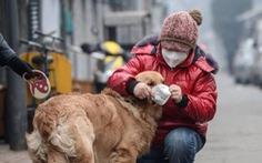 Nga đăng ký vaccine ngừa COVID-19 đầu tiên trên thế giới dành cho thú cưng