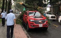 Mưa Sài Gòn chiều 15-4, nhiều đường ngập, cành sao lớn gãy lìa, đè bẹp nóc xe hơi