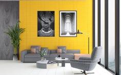 Ứng dụng đa dạng của bộ sưu tập gạch Colour trong trang trí nội thất