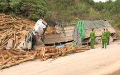 Doanh nghiệp có xe tải gây tai nạn làm 7 người chết bị phạt 46 triệu đồng