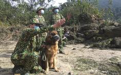 Bộ đội tăng quân lên biên giới Việt - Lào chống dịch COVID-19