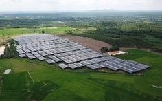 Điện mặt trời áp mái tại Đắk Lắk: Nhanh quá… hóa thừa