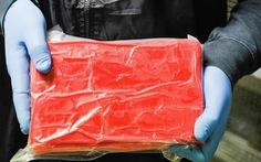 Hong Kong bắt 700kg cocaine nhập vào bằng tàu cao tốc