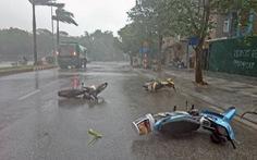 Hôm nay 4-4, mưa dông diện rộng ở vùng núi Bắc Bộ, Nam Bộ mưa tối