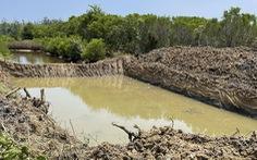 'Tuyệt cảnh' bàu Cá Cái bị đào bới, phá rừng nuôi trồng thủy sản
