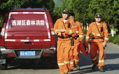 Sở thú Trung Quốc để xổng 3 con báo suốt 1 tuần không trình báo
