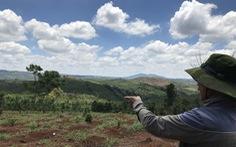 Tạm đình chỉ điều tra vụ 6 cựu chiến binh 'tham gia phá rừng'