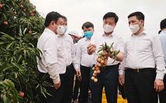 Bộ trưởng Lê Minh Hoan: 'Vải em là vải vườn nhà. Em là con gái Thanh Hà xứ Đông'