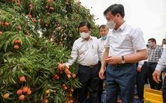 Bộ trưởng Lê Minh Hoan bàn cách tiêu thụ nông sản mùa đại dịch