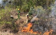 Rừng thông ở Quảng Nam cháy dữ dội nhiều giờ liền