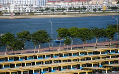 Xe 'đắp chiếu' nằm bãi vì dịch, lao động vận tải Đà Nẵng thất nghiệp