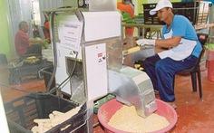 Gần 40% doanh nghiệp vừa và nhỏ Malaysia sẽ phá sản nếu phong tỏa toàn diện