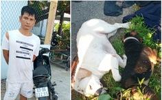 Bắt nghi phạm chuyên dùng súng điện bắn trộm chó của người dân