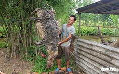 Thấy 5 con cá sấu ở Bình Chánh, mới bắt được 4
