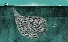 Các nước Thái Bình Dương khổ vì nạn đánh bắt cá lậu