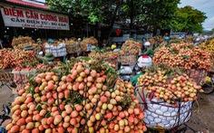 Phó thủ tướng Lê Văn Thành yêu cầu các nơi không 'ngăn sông, cấm chợ' xe chở vải thiều