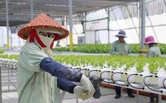 Đông Nam Á học hỏi công nghệ nông nghiệp của Israel