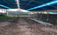 Trang trại nông nghiệp nhưng chỉ bán điện