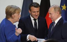 Ý tưởng gặp ông Putin của EU bị ví như 'cuộc chiến giành mật ong với gấu'